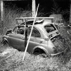 Fiat500nelmondo (@fiat500nelmondo) • Foto e video di Instagram Fiat 500, Fiat Abarth, Steyr, Video, Vehicles, Car, Instagram, Pictures, Italia