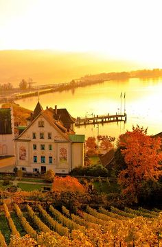 Autumnal Glow in Rapperswil, Switzerland Places Around The World, Oh The Places You'll Go, Places To Visit, Around The Worlds, Wonderful Places, Great Places, Beautiful Places, Winterthur, Zermatt