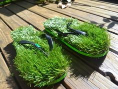 Love the feeling of bare feet on freshly mowed grass?  Why not have that feeling anywhere, anytime.  KUSA unisex grass flip flops give you the opportunity to do just that. GetdatGadget.com/kusa-unisex-grass-flip-flops/