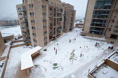 snow in jerusalem / by: Yael Ilan