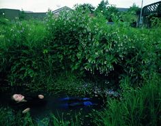 Tom Hunter, Life and Death in Hackney Series (The Way Home), 2000, Cibachrome print    ~Via Paolo Giudici, The Death of Ophelia