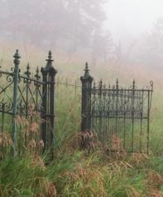 This is a cemetery gate, but a classic pattern that could look great in a more structured garden. Old Gates, Colorado, Fence Gate, Fencing, Iron Fences, Gate 2, Grades, Wrought Iron Gates, Garden Gates