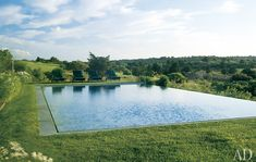 The Designer's Muse: Pools to Dive For