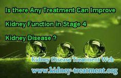 can prednisone improve kidney function