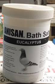 Image result for racing pigeons Racing Pigeons, Coconut Oil, Jar, Image, Jars, Glass
