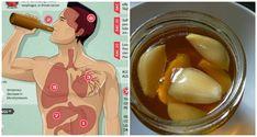 lo que sucede cuando comes ajo y miel en ayunas