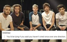 Actually I honestly don't think I have cried over them before. But I LOVE ONE DIRECTION