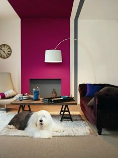 Find the best colour paint for your living room, bathroom, bedroom and more with Dulux paint. Find the right colour for you with our Dulux paint ideas. Dulux White Paint, Plum Paint, Dulux Paint Colours, Red Paint, Plum Bedroom, Guest Bedroom Decor, Grey Bedrooms, Teen Bedroom, Paint Colors For Living Room