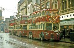 Festive trolley bus
