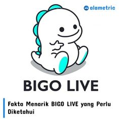 BIGO LIVE-Live Stream APK is the most famous mobile live stream app for android phones where you can start your own live stream. Real Hack, Live App, Ios, Video Chat, App Hack, Live Stream, Android Hacks, Chat App, Apps