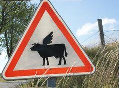 Allerlei: Fliegende Kühe Moose Art, Fun, Animals, Vacation Travel, Bowties, Animales, Animaux, Animal, Animais