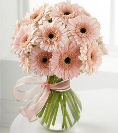 This arrangement of lovely Gerbera Daisies is a great example of using one type and color of flower to make a statement. The matching ribbon ties it all together. Shop Gerbera Daisies in a variety of colors year-round at GrowersBox.com.