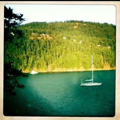 Orcas, San Juan islands wa #sanjuanislands #washington
