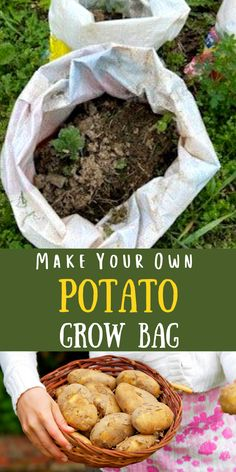 Ever wonder how to grow potatoes in a container? How about growing them in a bag? Let me show you how easy it is to make your own potato grow bag! You can grow potatoes in a grow bag right on your front porch, patio or deck! #potatogrowbag #potatocontainergarden Gardening Hacks, Organic Gardening Tips, Organic Fertilizer, Vegetable Gardening, Container Gardening, Amazing Gardens, Beautiful Gardens, Grow Potatoes, Real Food Recipes