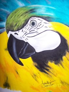 oil pastel Bongo the Macaw #art #oilpastel #macaw