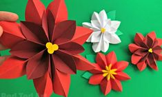 Easy Paper Flowers Poinsettia