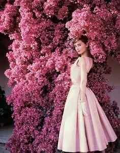 Audrey Hepburn for Vogue 1955 by Norman Parkinson
