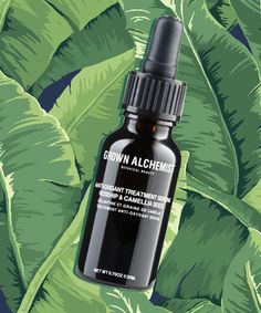 A Potent Serum With a Teeny Price Tag. Grown Alchemist Treatment Serum, $24.95.  This certified organic facial serum is packed with good-for-skin oils (think: rosehip and camellia seed, which also happen to be the first two ingredients -- and therefore the most abundant). It quickly sinks into skin, leaving it smooth, hydrated and repaired.