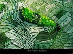 Earth from Above | Yann Arthus-Bertrand Earth from above Poster Kunstdruck bei ...