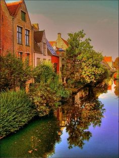 Colourful houses by a canal