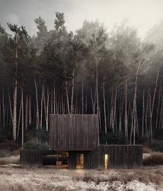 Black Timber House | Gluzdakova Maria Software: Vray + Autodesk 3ds Max