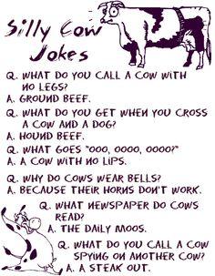 Silly Cow Jokes See this image on Photobucket. Silly Cow Jokes See this image on Photobucket. Funny Puns For Kids, Pranks For Kids, Jokes Kids, Stupid Jokes, Corny Jokes, Kids Laughing, Laughing So Hard, The Words, Memes Humor