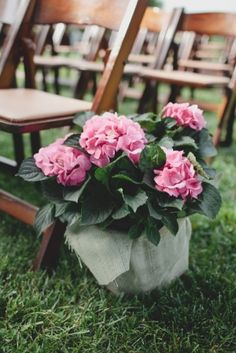 Easy Ceremony Flowers in two steps: 1) Get a potted plant 2)Cover the base in a scrap of burlap. Done!