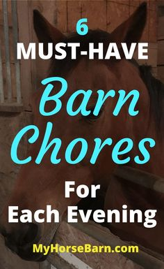 An easy nightly routine for the barn!