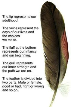 Symbolism of the feather