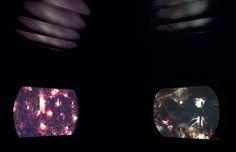 Exposición: Mar Gascó. El Cuerpo Descrito (2015) Espacio de Creación Contemporánea de Cádiz (ECCO)  Título: INtestinal (2013-2015) Instalación audiovisual  Mar Gascó Sabina