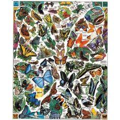 94 best butterflies images beautiful butterflies butterflies beautiful bugs for Garden pavilion crossword clue