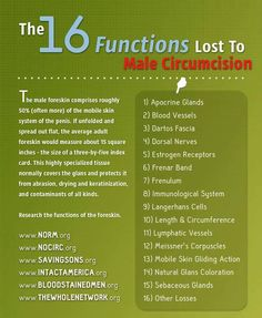 16 Functions Lost to Male Circumcision