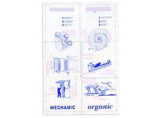 Graduate | Graphic Design | Academics | RISD