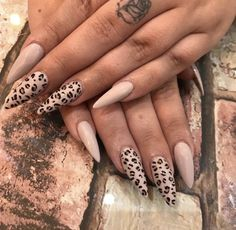 Leopard nails With daily shares posts updates and ratings the EEVOY app is revolutionizing the way people connect with personal care service providers Leopard Nail Art, Leopard Print Nails, Sexy Nails, Dope Nails, Nail Art Designs, Best Acrylic Nails, Pastel Nails, Nagel Gel, Pretty Nails