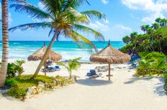 Muchos hoteles de la Riviera Maya cuentan con accesos a playas únicas, exclusivas, para que el relax y el contacto con la naturaleza sea realmente único ¡Consulta ofertas!  #Cancun #RivieraMaya #PlayaDelCarmen  http://www.bestday.com.mx/Cancun/ReservaHoteles/