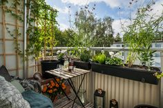 Olshammarsgatan 81, Hagsätra - Ormkärr - Lägenhet till salu Decoration, Plants, Balconies, Design, Color Inspiration, Green, Patio, Decor, Verandas