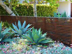 Modern, Wood, Fence, Agave California Garden Tours Landscaping Network Calimesa, CA Modern Landscaping, Front Yard Landscaping, Landscaping Ideas, Privacy Landscaping, Landscaping Contractors, Fence Design, Garden Design, Modern Wood Fence, Wooden Fences