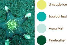 July 2015 Color Play: Limeade Ice, Tropical Teal, Aqua Mist, Pinefeather