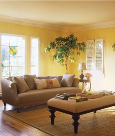 yellow walls and tan couch - I'm sold. I can absolutely picture this room in my house