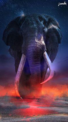 Serenity/life Elephant Wallpaper, Elephant Artwork, Elephant Pictures, Elephants Photos, Elephant Love, Animal Wallpaper, Animal Pictures, Majestic Animals, Animals Beautiful