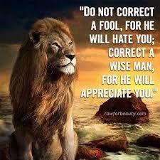 ผลการค้นหารูปภาพสำหรับ lion motivational quotes