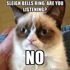 Grumpy cat Tard on holiday music :)
