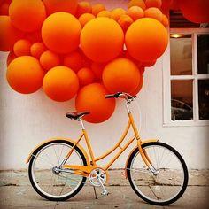 Rainbow Aesthetic, Aesthetic Colors, Orange Aesthetic, Aesthetic Photo, Orange Is The New Black, All The Colors, Color Inspiration, Orange Color, Orange Orange