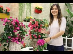 Begonvil (Bougainvillea) Yetiştirmenin Püf Noktaları! How to care Bougainvillea? (ENGLISH CC) - YouTube