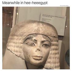Cool Memes, Really Funny Memes, Best Memes, Funniest Memes, All Meme, Stupid Funny Memes, Funny Relatable Memes, Haha Funny, Funny Stuff