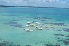 Galés - Alagoas