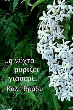 Good Night Sweet Dreams, Greek Words, Greek Quotes, Good Vibes, Night Time, Beautiful Pictures, Spirituality, In This Moment, Fotografia