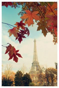 Pictures from Paris: I Love Paris in the Fall...
