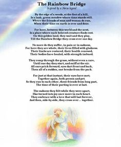 Rainbow Bridge- for Brittany, Barney, and Cas Missing My Love, Love You, Dog Quotes, Animal Quotes, Rainbow Bridge Poem, Norse Legend, Dog Passed Away, Pet Loss Grief, Cavachon
