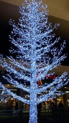 Albero natalizio illuminato di azzurro